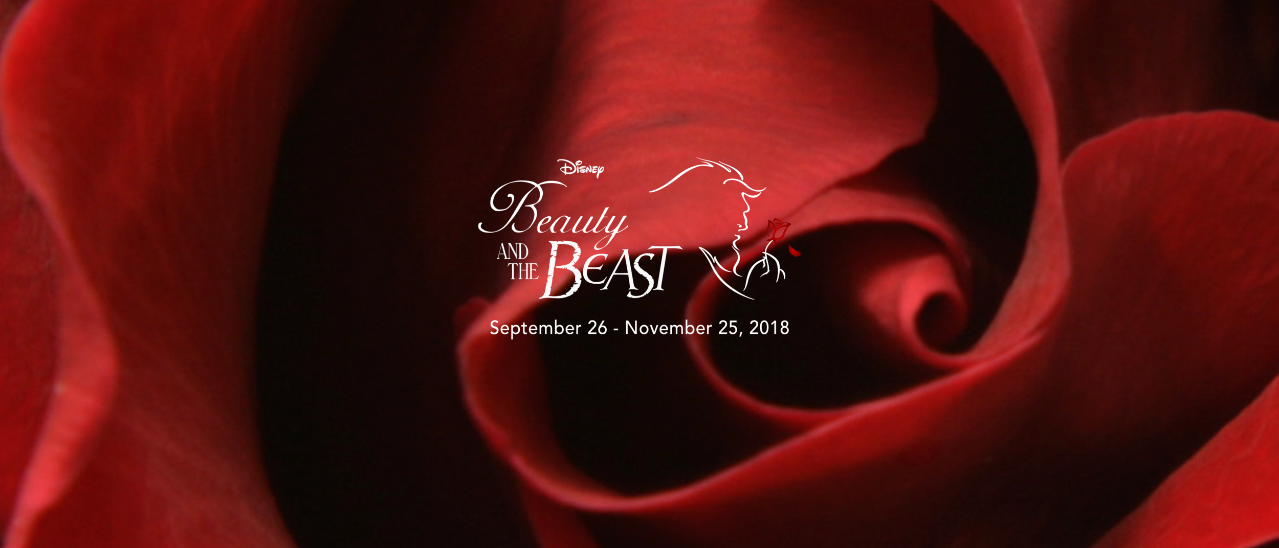 Disneys beauty and the beast tour stafford virginia a beautiful young woman takes the place of her imprisoned father in the castle of a beast who is really a cursed prince she teaches him to be courteous izmirmasajfo